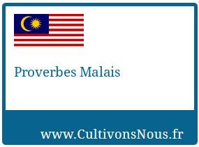 Proverbes Malais