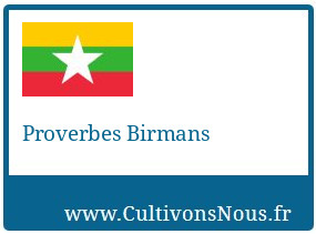 Proverbes Birmans