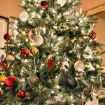 Comment choisir son sapin de Noël?