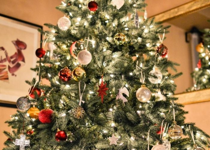 Comment choisir son sapin de Noël